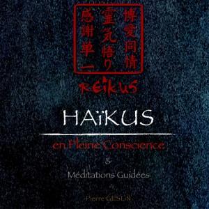La couverture de REiKUS, un livre multitouch à lire sur iPads, iPhones ou Macs